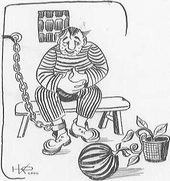 Карикатура, Юрий Васильевич