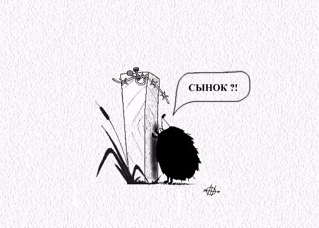 Карикатура, Евгений Прыгов