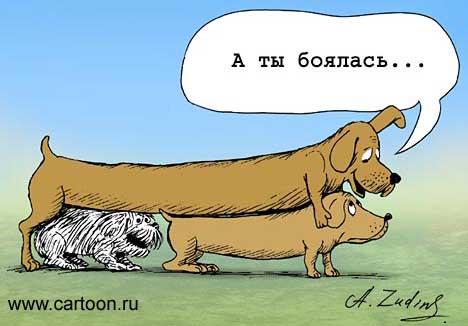 http://v1.anekdot.ru/an/an0105/010518az.jpg