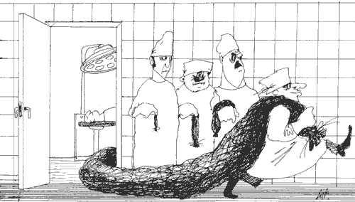 Карикатура, Александр Ануфриев