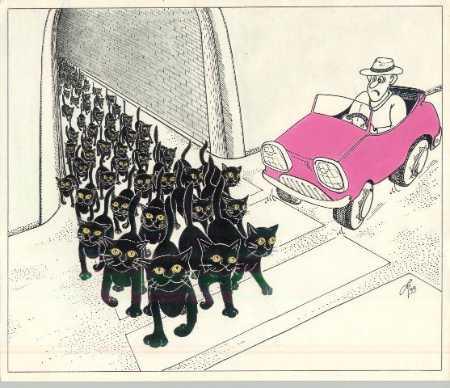 Карикатура, Владимир Радченко