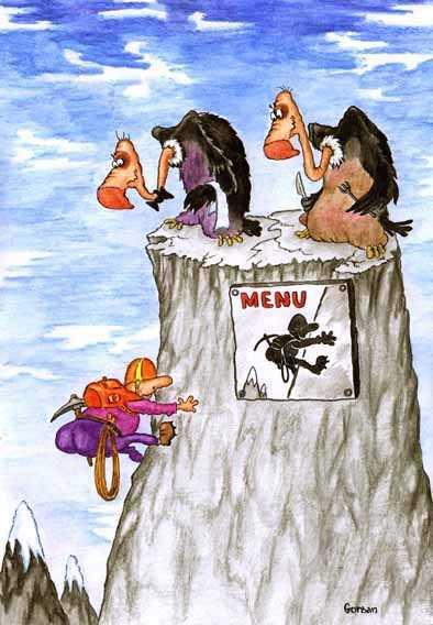 Карикатура, Владимир и Ирина Горбань