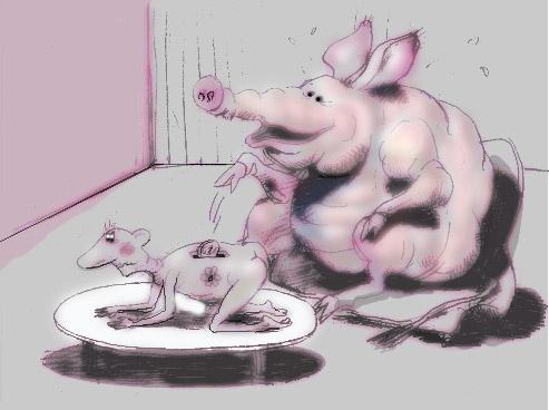 Карикатура, Владимир Шанин
