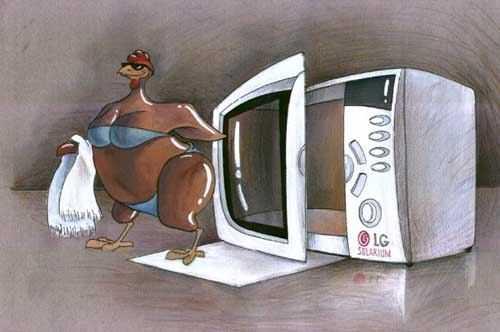 Карикатура, Дмитрий Дроздов
