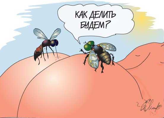 Карикатура, Alexis Molchanoff