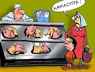 Карикатура: Камасутра!, Сергей Ёлкин