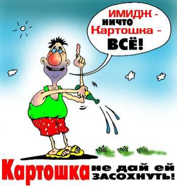 Карикатура: Имидж - ничто..., Дмитрий Полухин